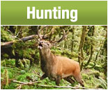 Hunting Information